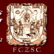 Federación de Clubes Zacatecanos del Sur de California